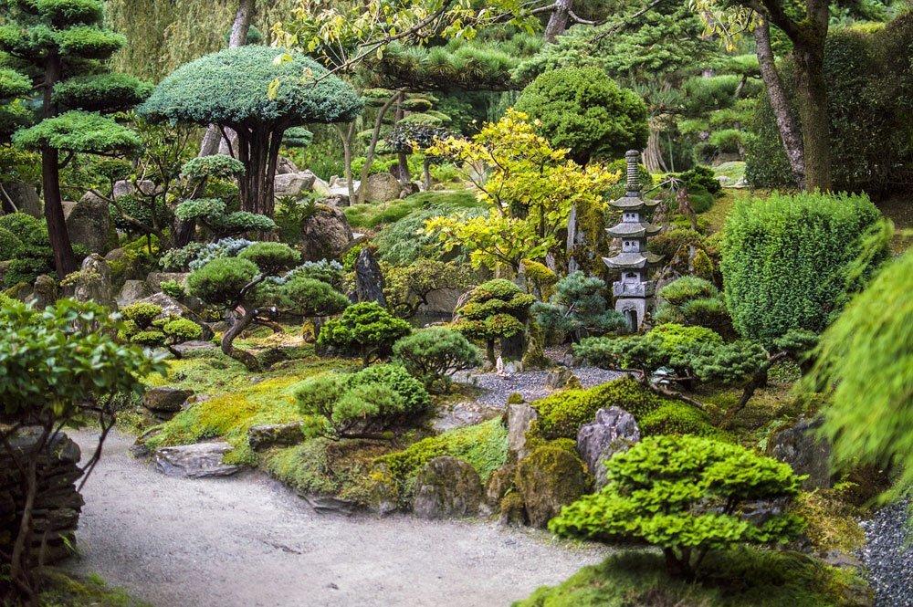 Quelques conseils pour l\'aménagement d\'un jardin en pente ...